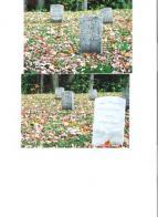 Post 49, Tilton NH  Park Cemetery Committee