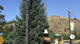 American Legion post cares for city's flags
