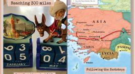 My 300-mile challenge