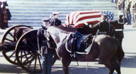 Remembering a legendary horse