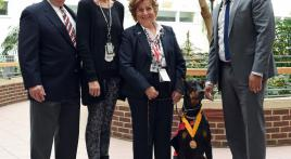 Local Doberman Honored as Lyons VA Hospital's Therapy Dog of the Year