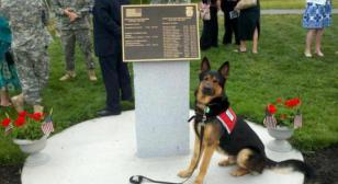Service Dog Issued in Memory of  Rhode Island Soldier