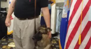 Royal Oak (Mich.) Post 253 helps provide service dog