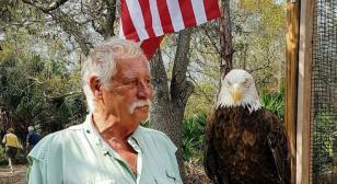 Vietnam veteran helps heal other veterans through wounded birds of prey